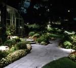 well lit garden cropped